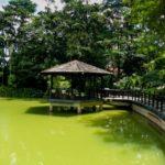 Hütte im Botanischen Garten